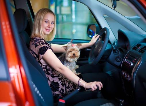 Fotolia_11647223_Subscription_XL - ביטוח רכב